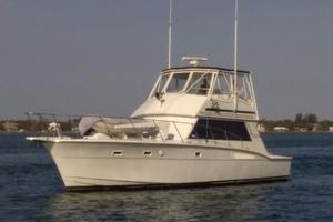 photo of Hatteras-50-Convertible-1981-2009-Repower-Stuart-Florida-United-States-Port-Bow-View-372116