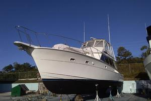 photo of Hatteras-50-Convertible-1981-2009-Repower-Stuart-Florida-United-States-Bow-on-the-Hard-372119