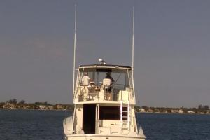 photo of Hatteras-50-Convertible-1981-2009-Repower-Stuart-Florida-United-States-Stern-View-372114