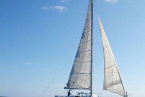 50' Custom Day Sail Charter 50 1984 Next Wave exterior