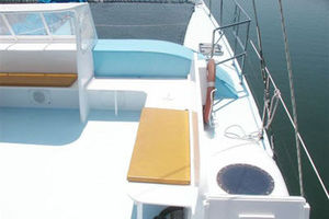 50' Custom Day Sail Charter 50 1984 Next Wave deck