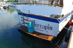 Picture of Terrapin