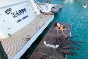 108' Johnson 108 FB Custom 2016 Sharks