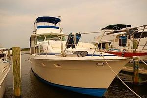 46' Bertram Motor Yacht 1974 Bow view