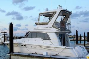 photo of Sea-Ray-480-Sedan-Bridge-1999-Sky-Blue-Fort-Pierce-Florida-United-States-Profile-920096