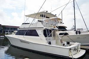 53' Viking Convertible 1990 Profile