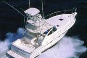 38' Tiara 3800 Open 2003 Manufacturer Provided Image: 3800 Open