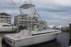 36' Bertram Moppie 1998 Profile