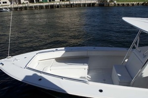 photo of Jupiter 31 Open -