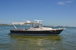 Black Watch 36' 36 Express 1995 Dorsal