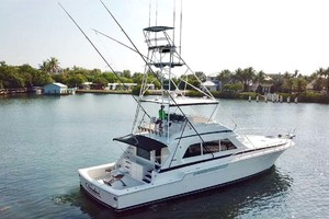 60' Bertram 60 Convertible 1998 Profile