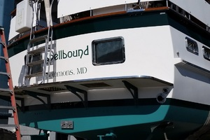Picture of Spellbound