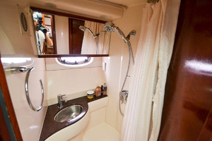 39' Meridian 391 Sedan Bridge 2011 Shower