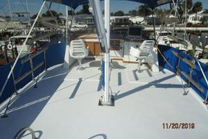 Picture of Southern Belle