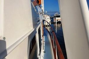 Picture of Sea Grace