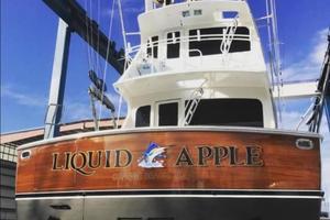 Picture of Liquid Apple