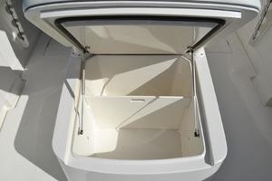 Forward Console Lounge, Wet or Dry Storage