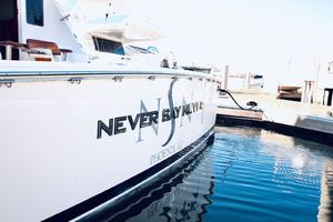 Picture of Never Say Never