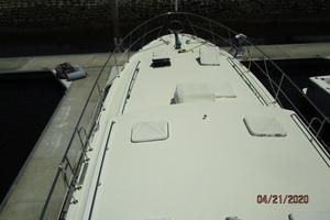 Picture of Stevedore