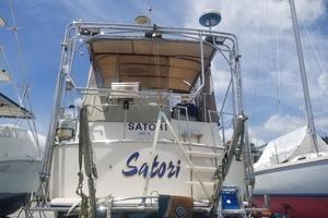 Picture of Satori