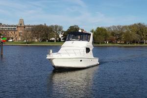 Picture of Skipper 2