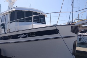 Picture of Jappeloup