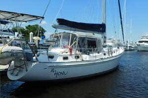 Picture of Honu