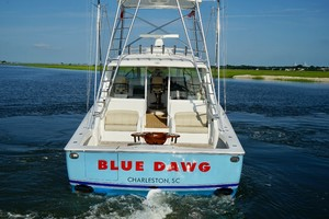 Picture of Blue Dawg
