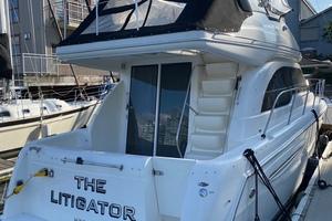 Picture of The Litigator