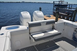 Tidewater 320 CC - aft seating