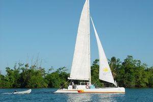 50 Day Sail Charter 50 1984  Next Wave