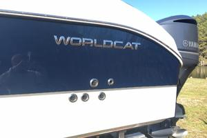32' World Cat 320 Dc 2019