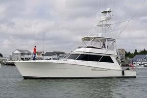 57' Viking Convertible 1989 Profile